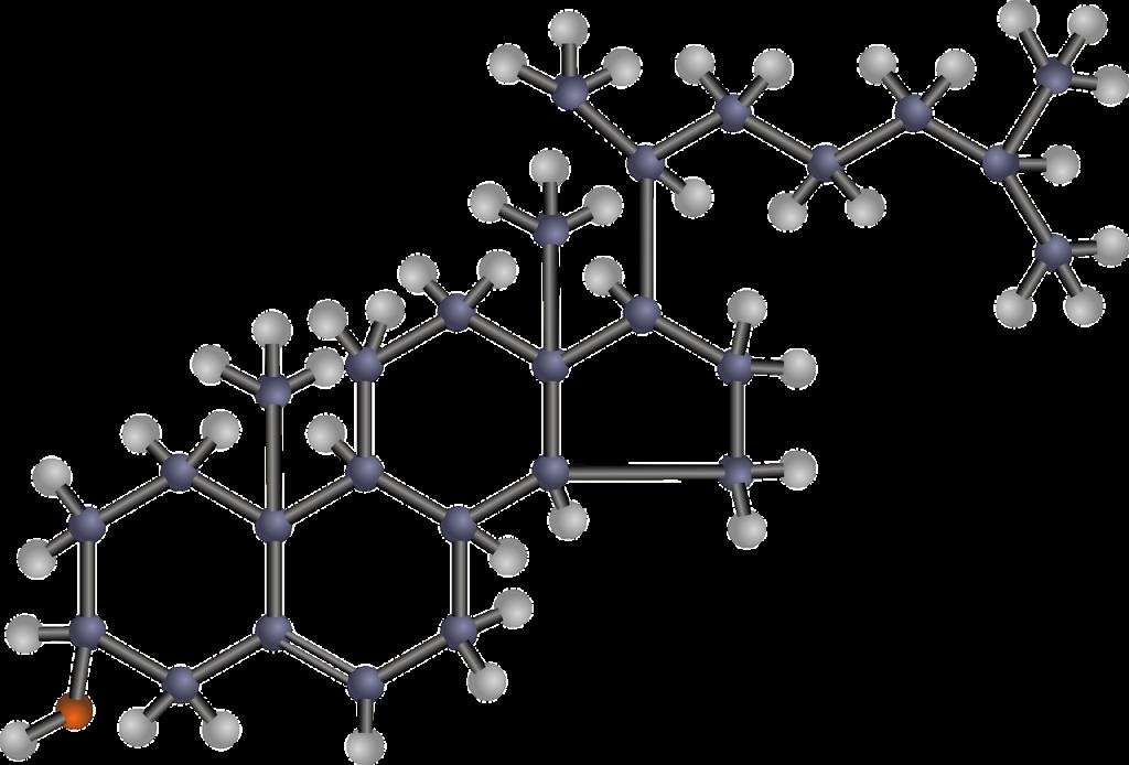 Cholesterin Struktur