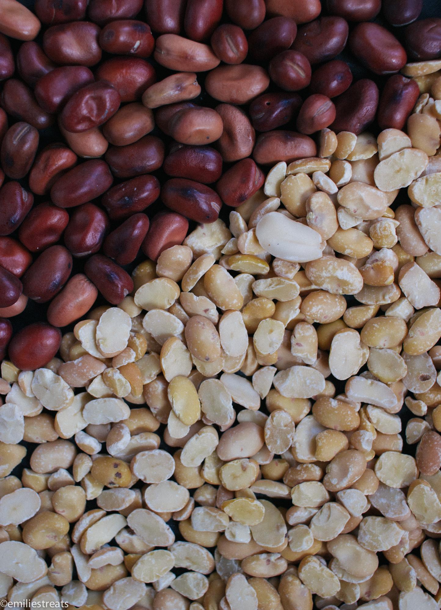 Hülsenfrüchte aus Deutschland Ackerbohne